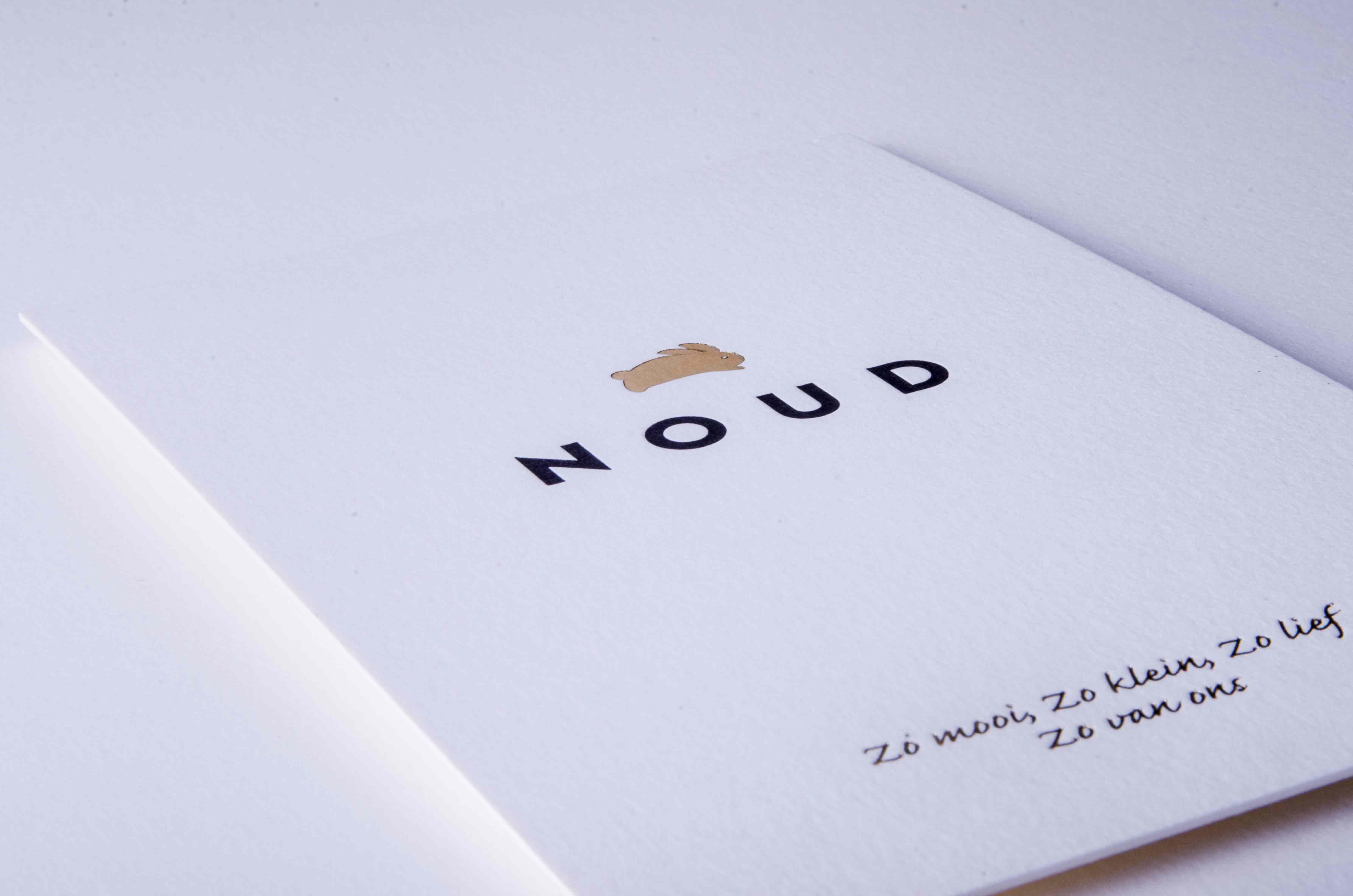 noud4